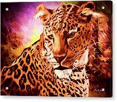Acrylic Print featuring the digital art Resting Leopard by Barry Jones