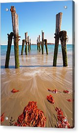 Acrylic Print featuring the photograph Returning To The Ocean by Brian Hale