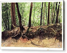 Returning To Your Roots Acrylic Print by Carla Dabney