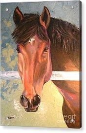 Reverie Acrylic Print by Susan A Becker