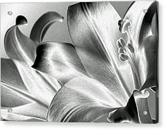 Acrylic Print featuring the photograph Reverse by Steven Huszar