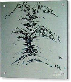 Rfb0206 Acrylic Print