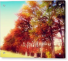 Rhapsody In Fall Acrylic Print by Wendy J St Christopher