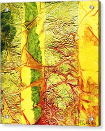 Rhapsody Of Colors 34 Acrylic Print by Elisabeth Witte - Printscapes