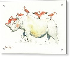 Rhino And Ibis Acrylic Print by Juan Bosco