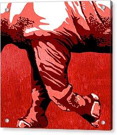 Rhino Animal Decorative Red Poster 7 - By  Diana Van Acrylic Print