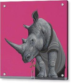 Rhino Acrylic Print by Jasper Oostland