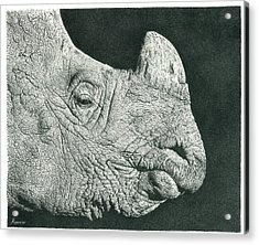 Rhino Pencil Drawing Acrylic Print