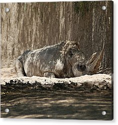 Acrylic Print featuring the digital art Rhino by Walter Chamberlain