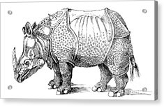 Rhinoceros Acrylic Print by Albrecht Durer