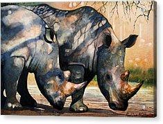 Rhinos In Dappled Shade. Acrylic Print