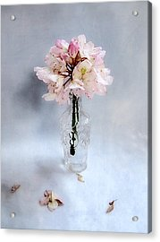 Rhododendron Bloom In A Glass Bottle Acrylic Print