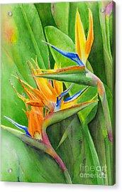 Rhonica's Garden Acrylic Print by Karen Fleschler