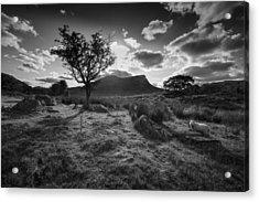 Acrylic Print featuring the photograph Rhyd Ddu, Snowdonia, Wales by Richard Wiggins