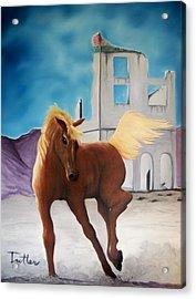 Rhyolite Pony Acrylic Print by Patrick Trotter