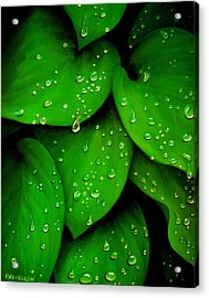 Rhythm Of The Rain Acrylic Print