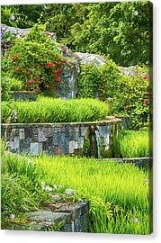 Rice Garden Acrylic Print by Wim Lanclus