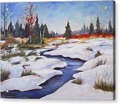 Rice Lake Acrylic Print by Diane Daigle