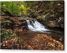 Ricketts Glen State Park Pennsylvania Autumn Waterfall Scenic Acrylic Print by Mark VanDyke