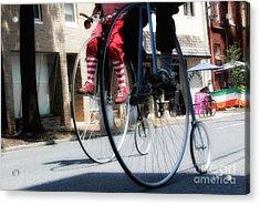 Riding High Acrylic Print by Steven Digman