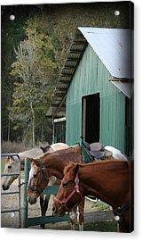 Acrylic Print featuring the digital art Riding Horses by Kim Henderson