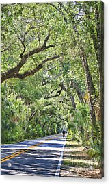 Riding The Ormond Loop Acrylic Print