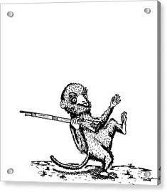 Rifle Monkey Acrylic Print by Karl Addison
