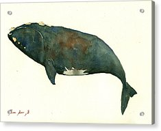 Right Whale Painting Acrylic Print by Juan  Bosco