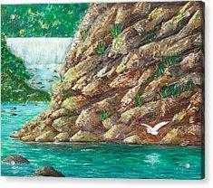 Rio La Plata Acrylic Print by Tony Rodriguez
