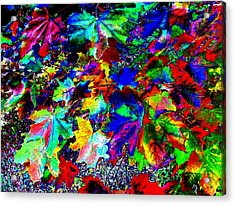 Riot Of Color Acrylic Print by Will Borden