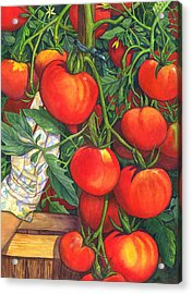 Ripe Acrylic Print by Catherine G McElroy