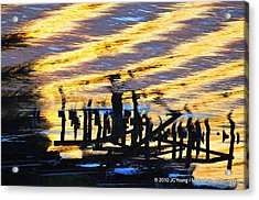 Ripple Effects Of The Day Acrylic Print by JCYoung MacroXscape