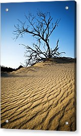 Rippled Sand Dunes Outer Banks Nc - Weathered Acrylic Print by Dave Allen