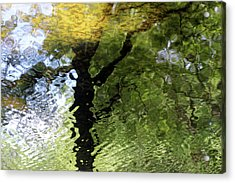 Ripples In Green Acrylic Print by Carolyn Stagger Cokley