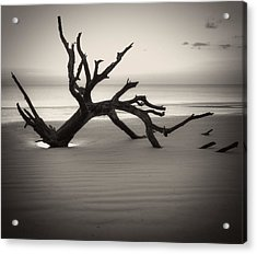 Ripples Of Sand And Driftwood Sepia Acrylic Print