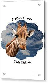 Rise Above Acrylic Print