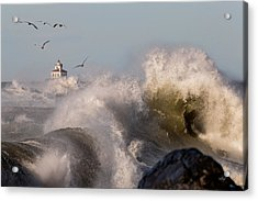Acrylic Print featuring the photograph Rise Above The Turbulence by Everet Regal