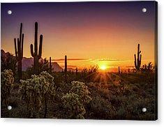 Acrylic Print featuring the photograph Rise And Shine Arizona  by Saija Lehtonen