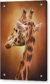 Rising Above - Giraffe Art Acrylic Print by Jordan Blackstone