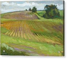 Rising Fields Acrylic Print