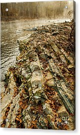 Acrylic Print featuring the photograph River Bank by Iris Greenwell