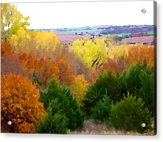 River Bottom In Autumn Acrylic Print