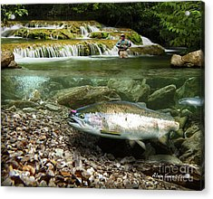 River Chrome Acrylic Print by Alex Suescun