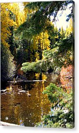 Acrylic Print featuring the photograph River Colors by Lynn Bawden