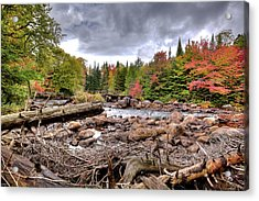 Acrylic Print featuring the photograph River Debris At Indian Rapids by David Patterson