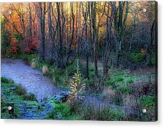 Acrylic Print featuring the photograph River Devon In Clackmannan by Jeremy Lavender Photography