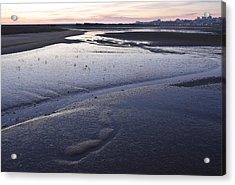 Dusky Wetlands Acrylic Print