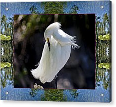 Acrylic Print featuring the photograph River Egret by Bell And Todd