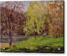 River Forks Spring 2 Acrylic Print