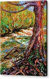 River Hafren In September Acrylic Print by Alexandra Cook